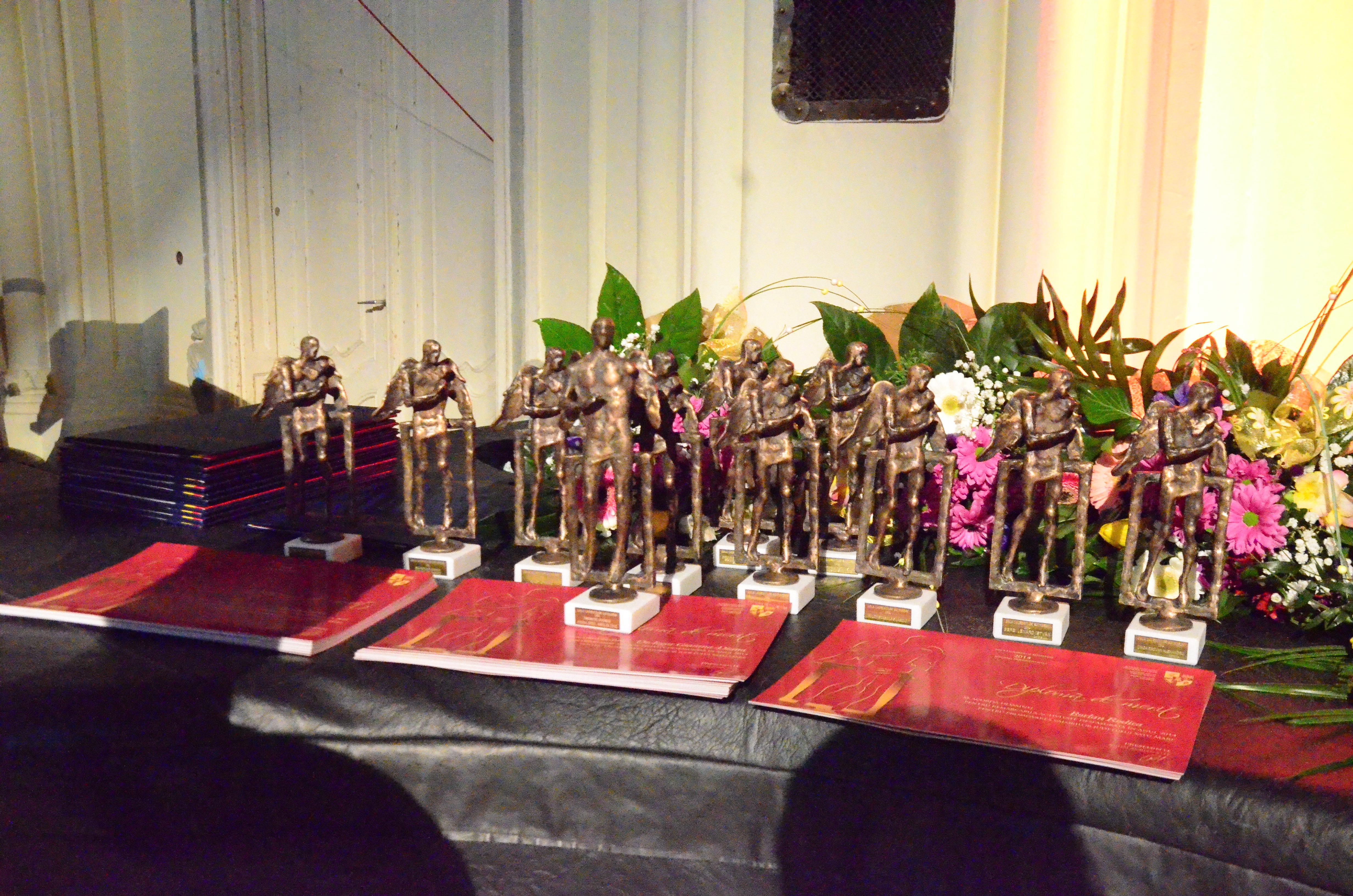 gala laureatilor 2015 (6)