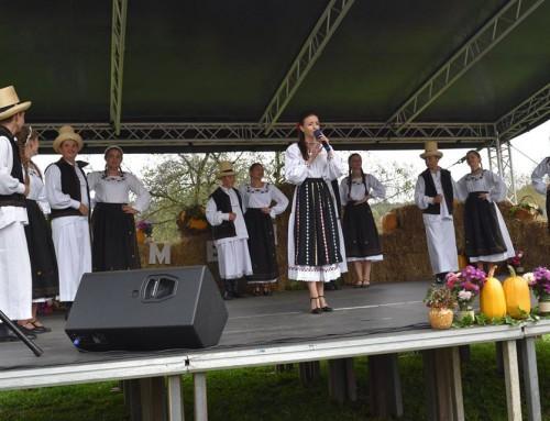 """Regal de folclor la festivalul """"Io-s fecior din Medișa"""""""